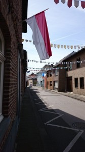 Das Dorf ist geschmückt; der ganze Zugweg - und damit die komplette Prämienstraße - ist mit Wimpeln versehen.