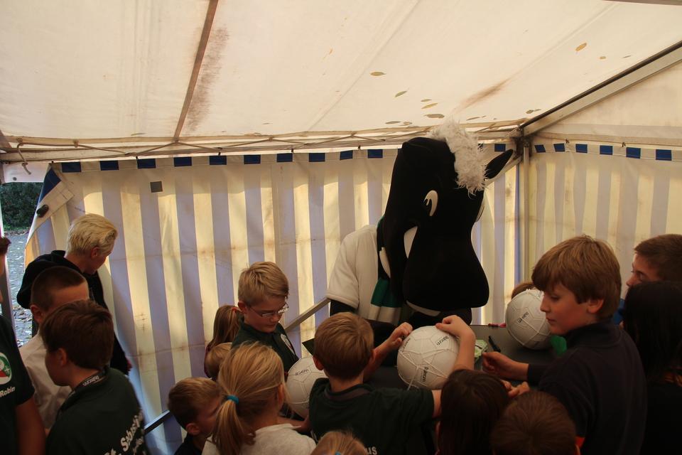 Jünter nach der Siegerehrung  bei der Unterschriftsstunde im Zelt
